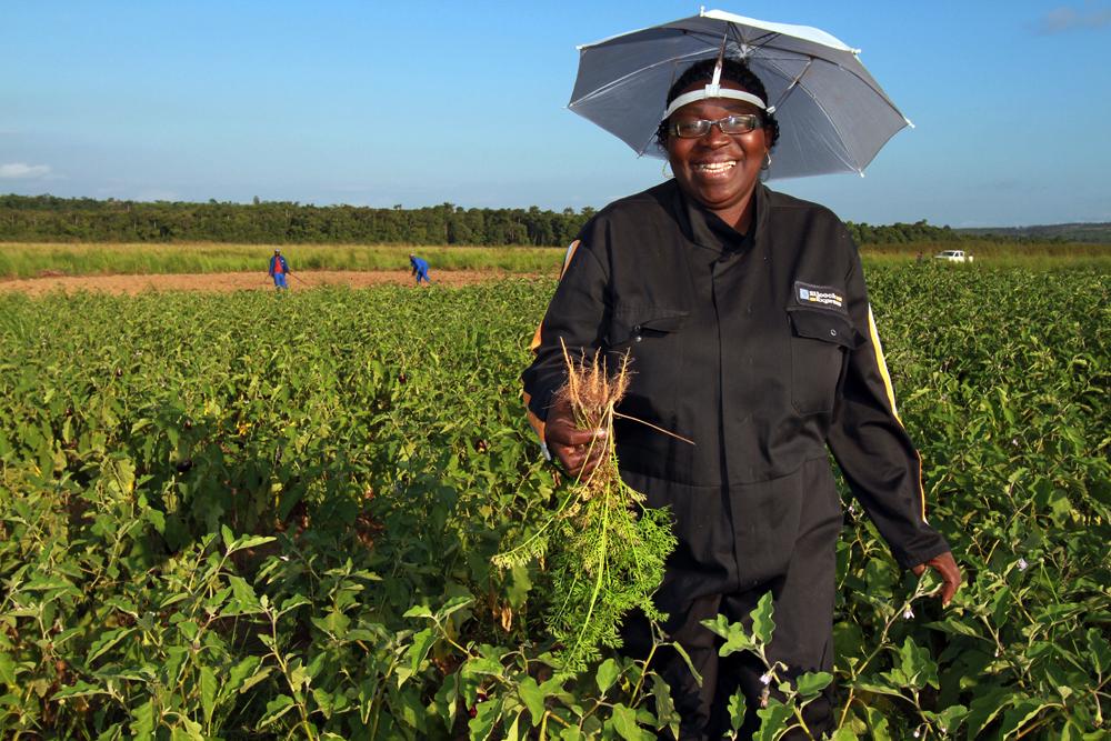 lentrepreneuse-olga-gotto-dans-ses-champs-de-legume-contente-de-recolte_01_baudouin-mouanda